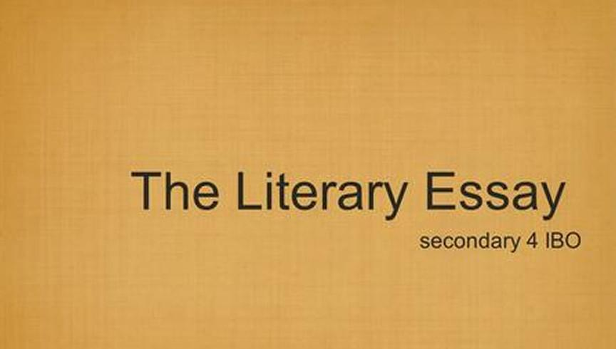 What is the definition of the Term Literal Essay?